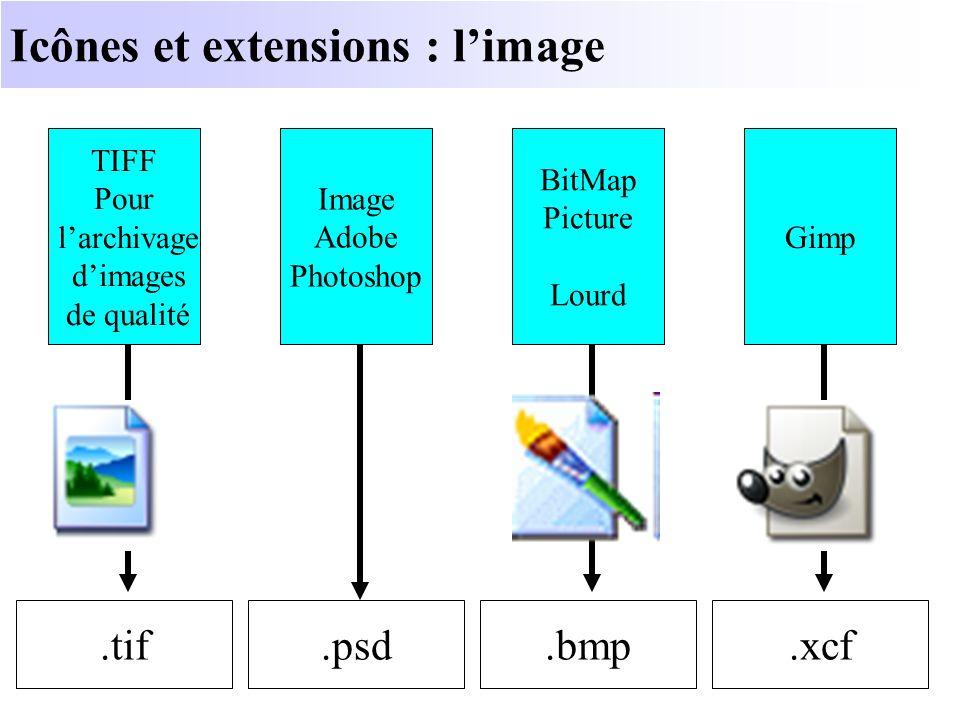 Icônes et extensions : l'image