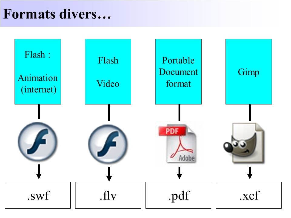 Formats divers… .swf .pdf .xcf .flv Flash : Animation (internet) Flash