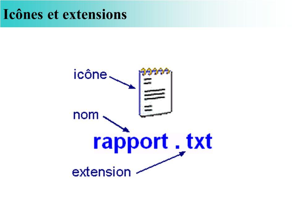 Icônes et extensions