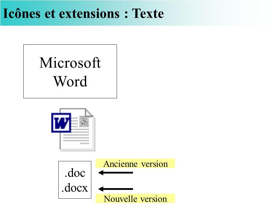 Microsoft Word Icônes et extensions : Texte .doc .docx