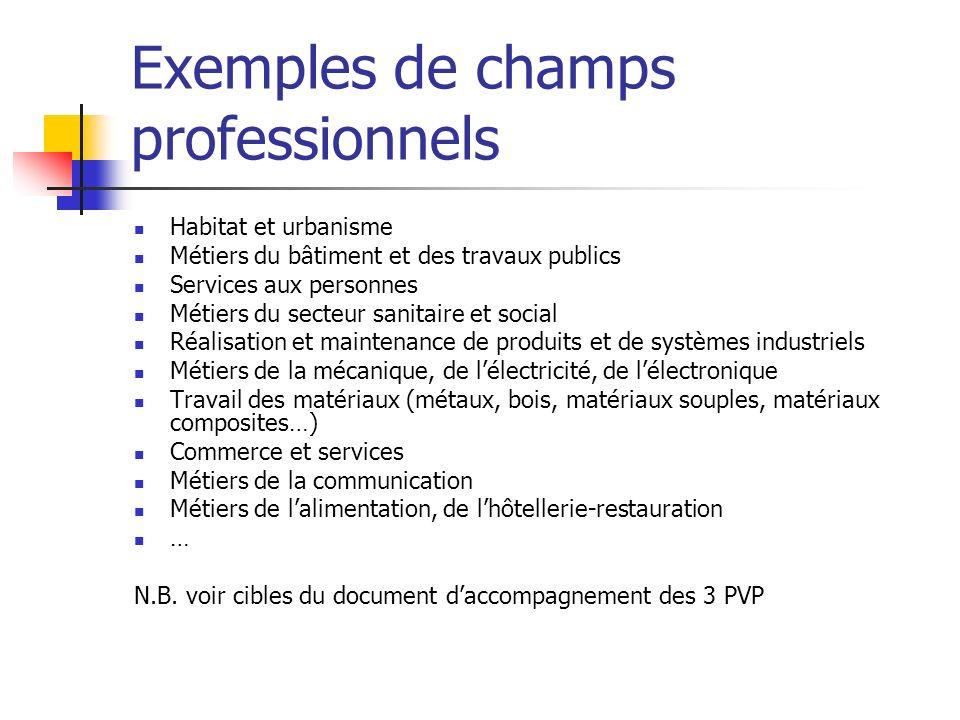 Exemples de champs professionnels