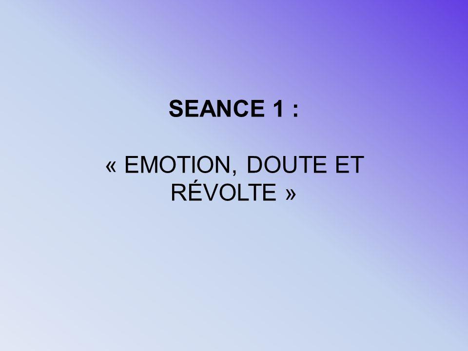 « EMOTION, DOUTE ET RÉVOLTE »