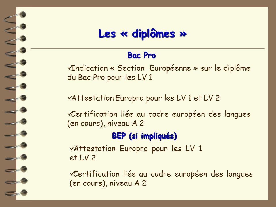 Les « diplômes »Bac Pro. Indication « Section Européenne » sur le diplôme du Bac Pro pour les LV 1.