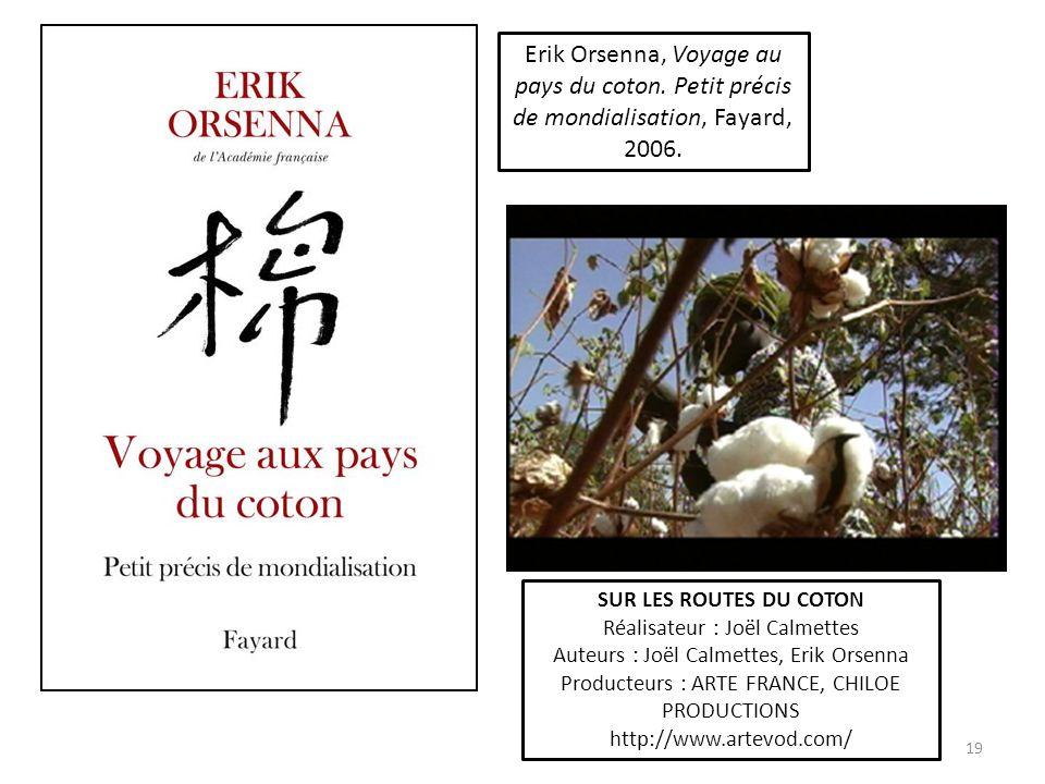 Erik Orsenna, Voyage au pays du coton