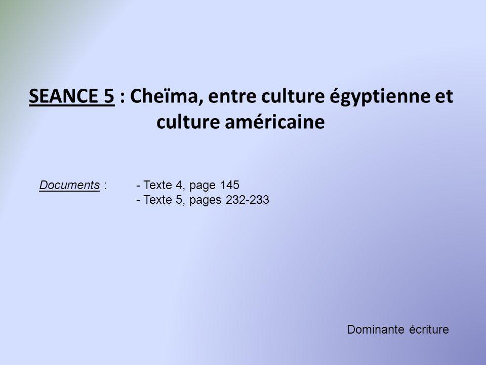 SEANCE 5 : Cheïma, entre culture égyptienne et culture américaine