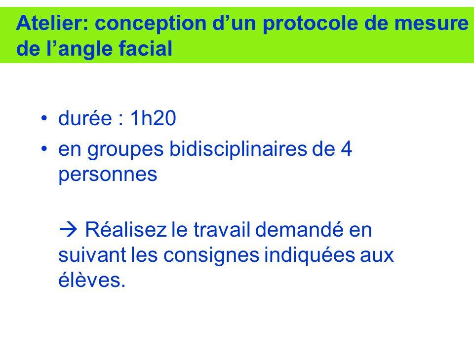 Atelier: conception d'un protocole de mesure de l'angle facial