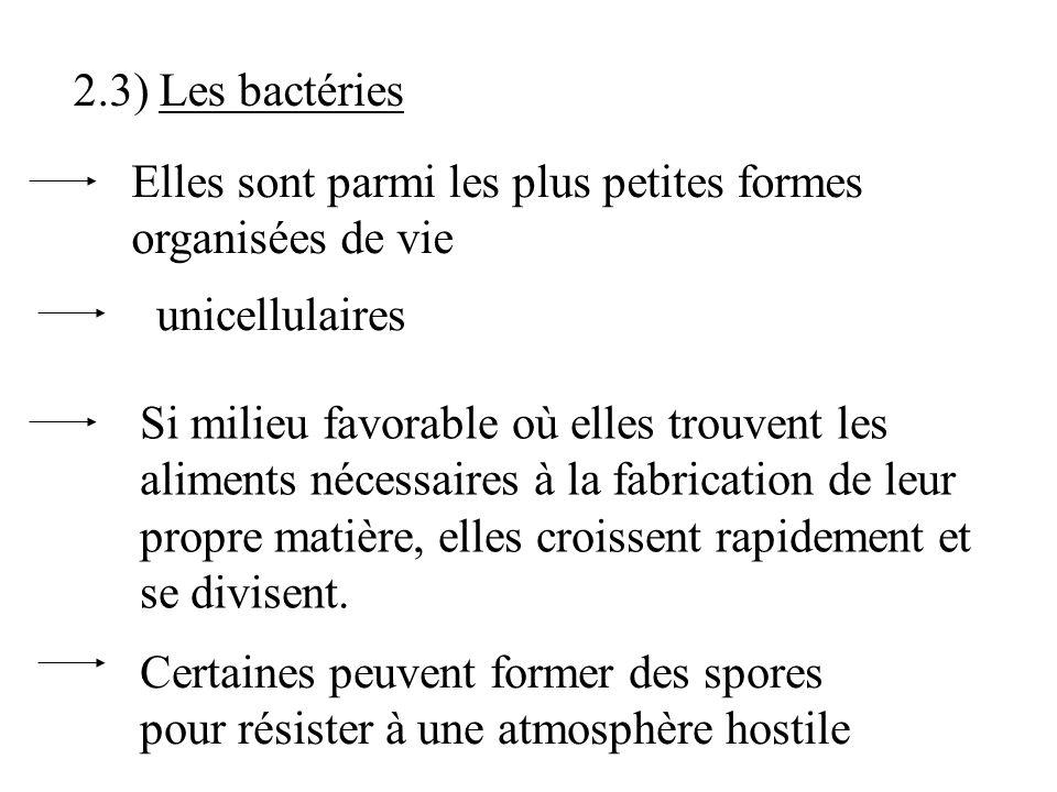 2.3) Les bactéries Elles sont parmi les plus petites formes organisées de vie. unicellulaires.