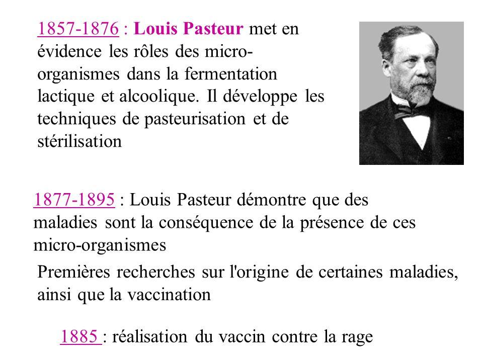 1857-1876 : Louis Pasteur met en évidence les rôles des micro-organismes dans la fermentation lactique et alcoolique. Il développe les techniques de pasteurisation et de stérilisation