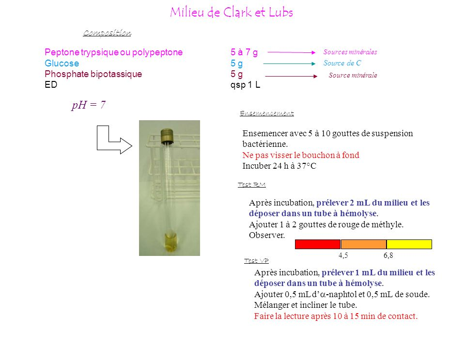 Milieu de Clark et Lubs pH = 7 Composition