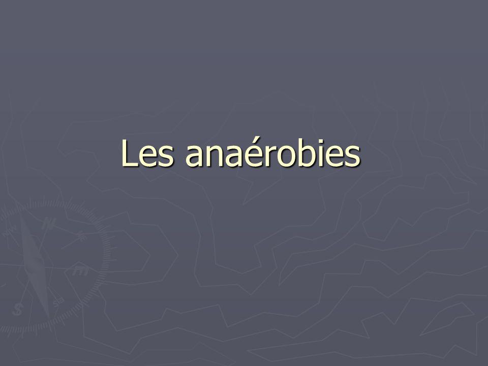 Les anaérobies