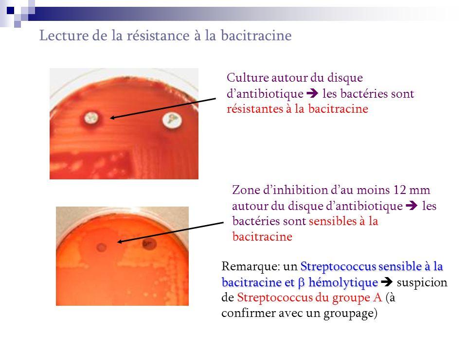 Lecture de la résistance à la bacitracine