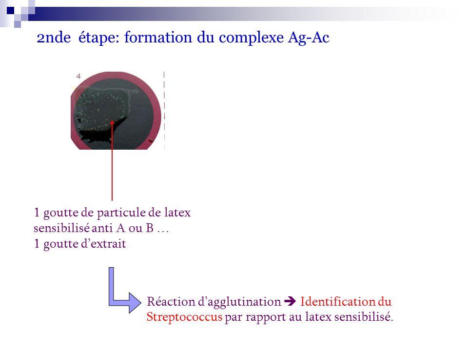 2nde étape: formation du complexe Ag-Ac