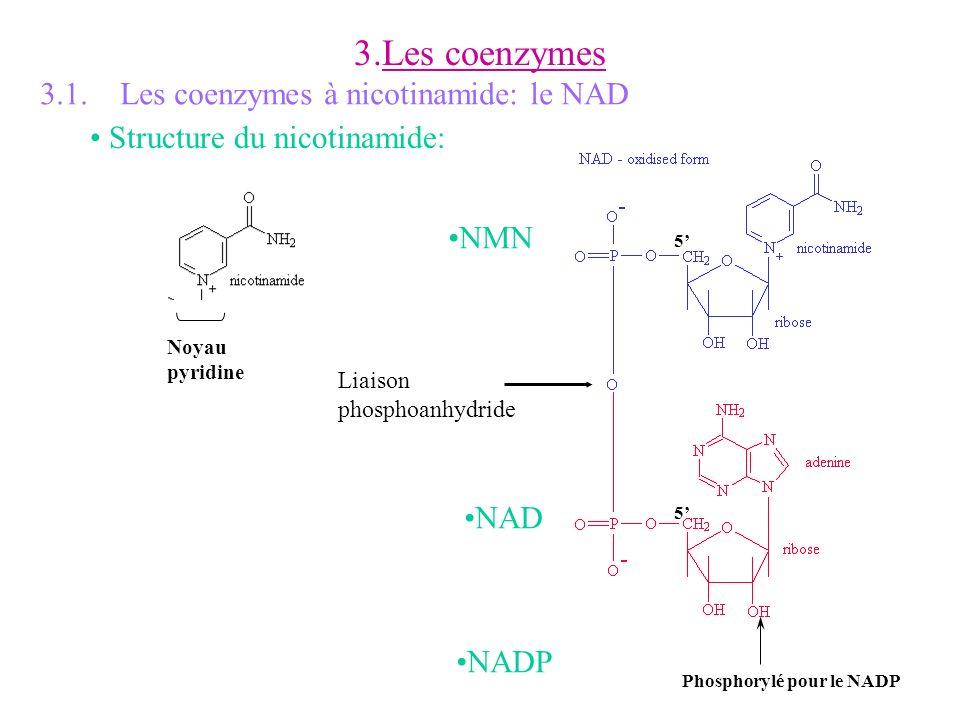 3.Les coenzymes 3.1. Les coenzymes à nicotinamide: le NAD