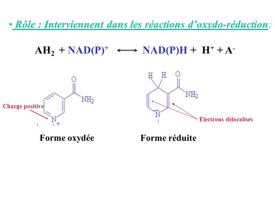 Rôle : Interviennent dans les réactions d'oxydo-réduction: