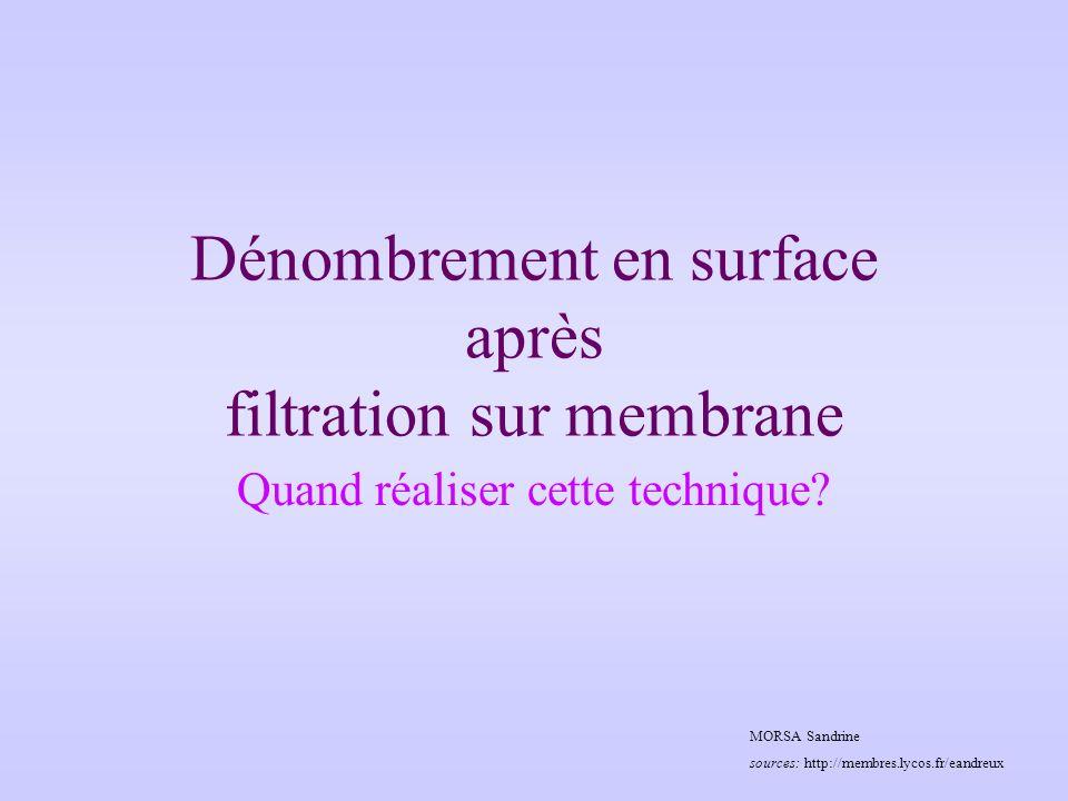 Dénombrement en surface après filtration sur membrane