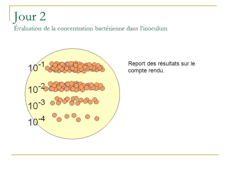 Jour 2 Évaluation de la concentration bactérienne dans l'inoculum