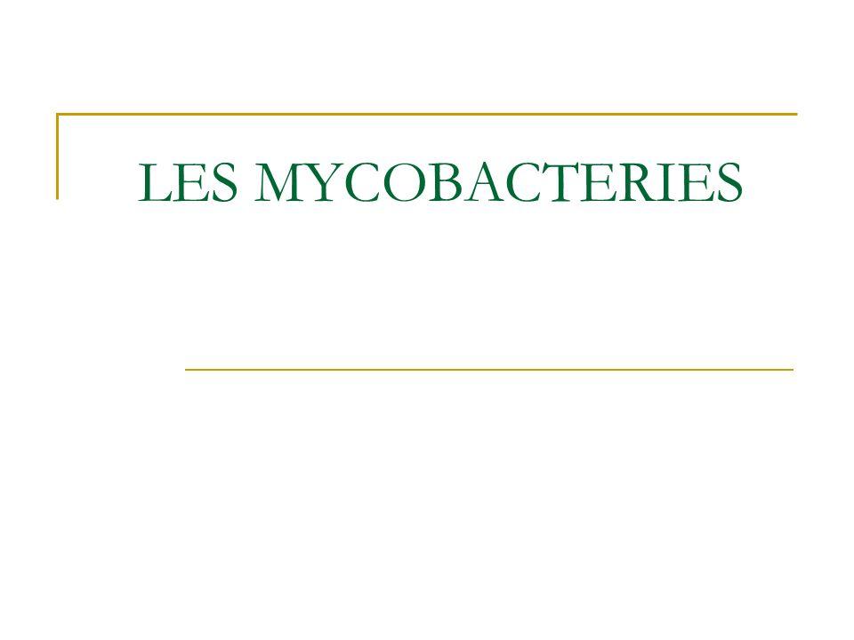 LES MYCOBACTERIES