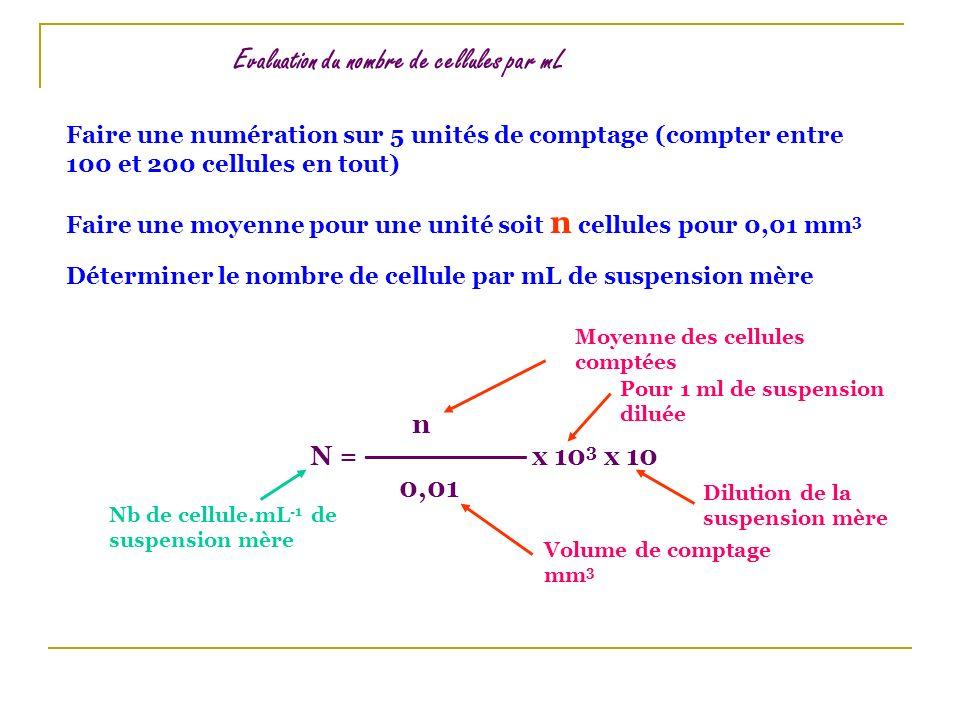 Evaluation du nombre de cellules par mL