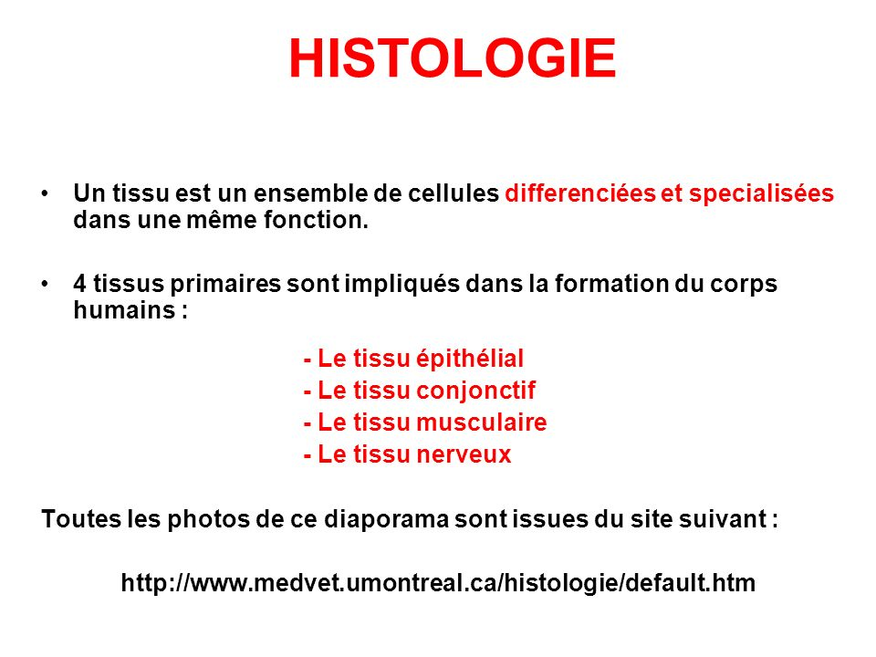 HISTOLOGIE Un tissu est un ensemble de cellules differenciées et specialisées dans une même fonction.