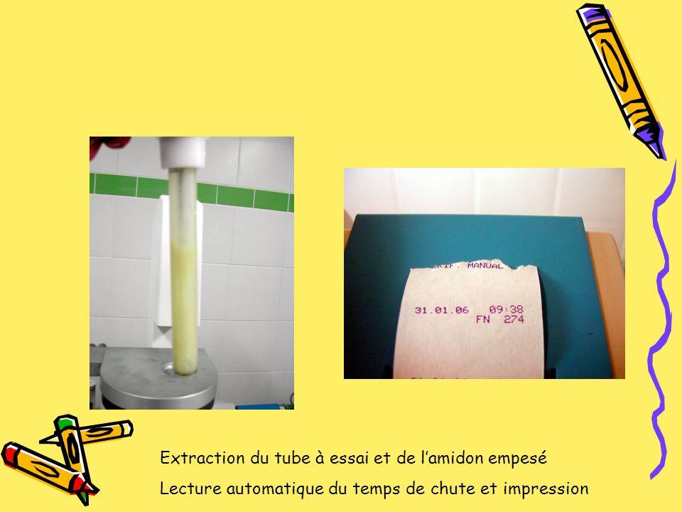 Extraction du tube à essai et de l'amidon empesé