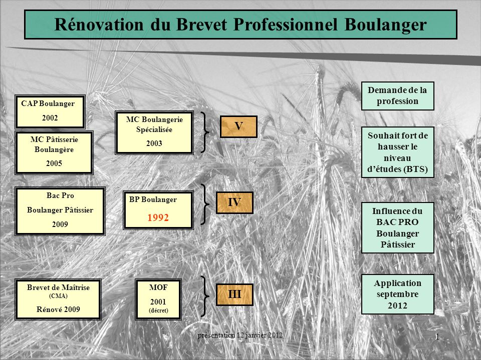 Rénovation du Brevet Professionnel Boulanger Demande de la profession
