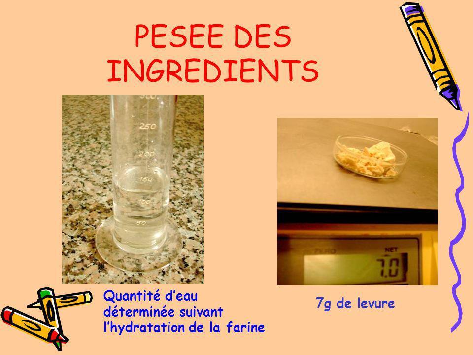 PESEE DES INGREDIENTS Quantité d'eau déterminée suivant l'hydratation de la farine 7g de levure