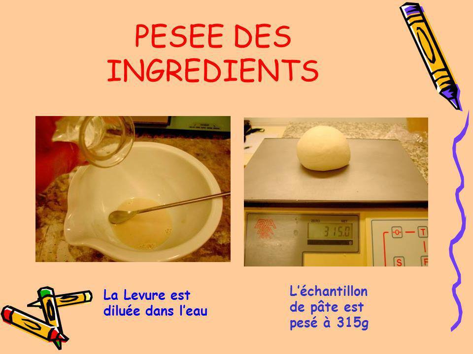 PESEE DES INGREDIENTS L'échantillon de pâte est pesé à 315g