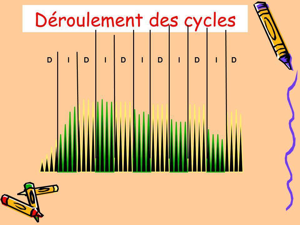 Déroulement des cycles