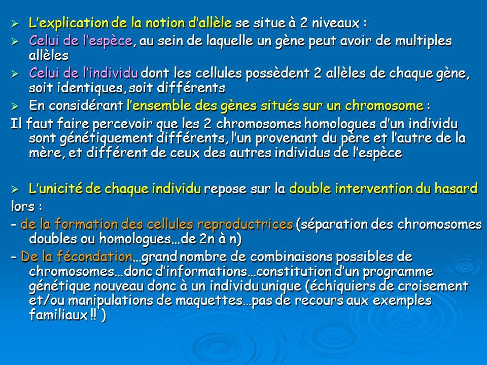 L'explication de la notion d'allèle se situe à 2 niveaux :