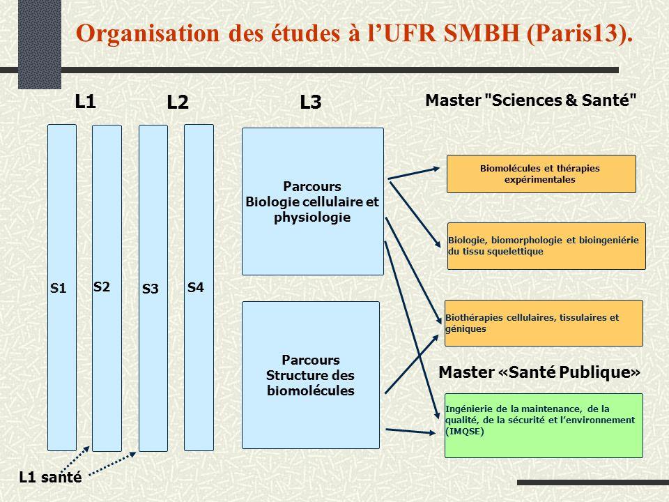 Organisation des études à l'UFR SMBH (Paris13).