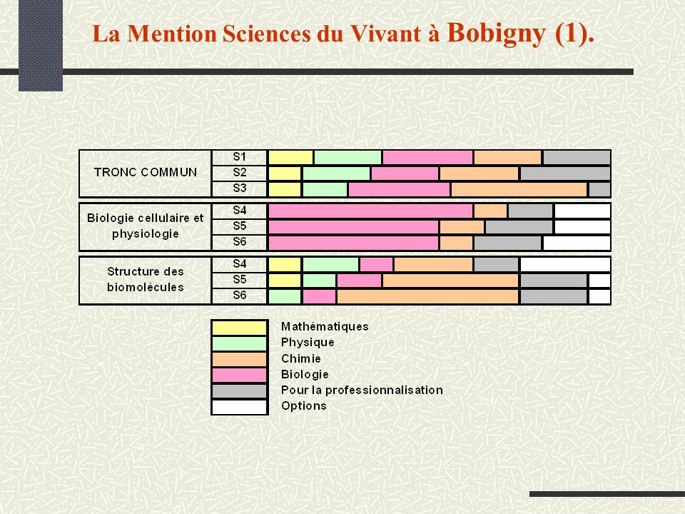 La Mention Sciences du Vivant à Bobigny (1).