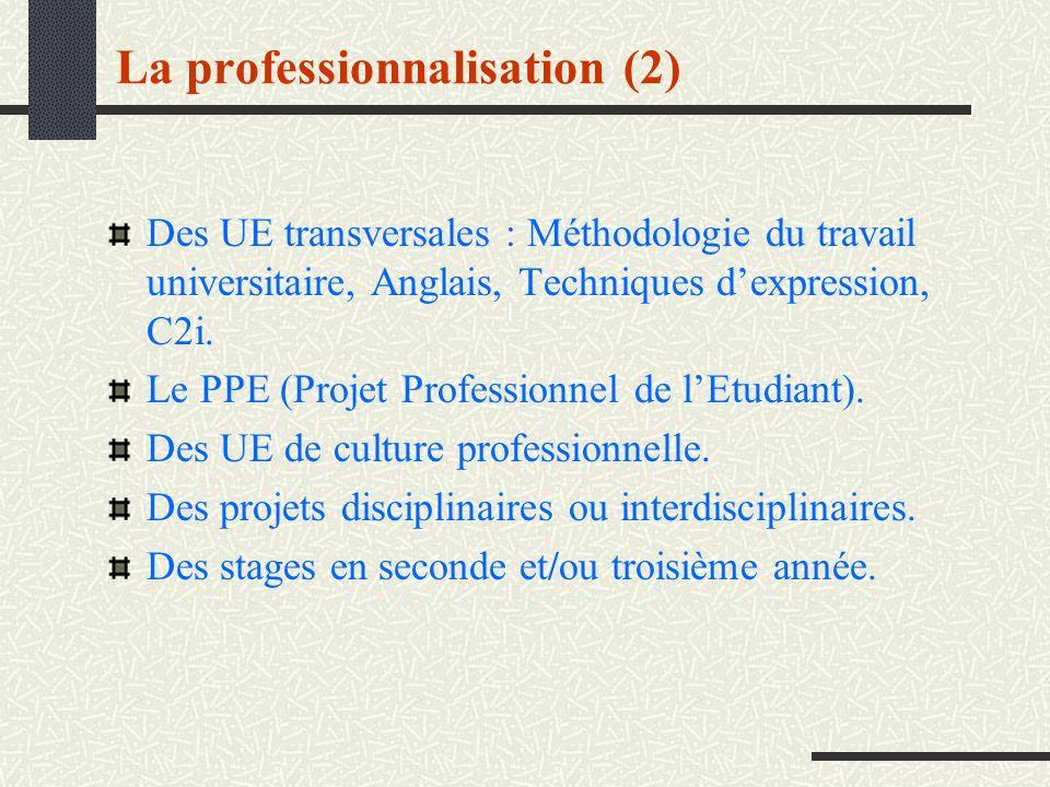 La professionnalisation (2)