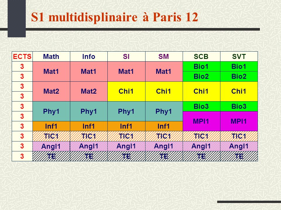 S1 multidisplinaire à Paris 12