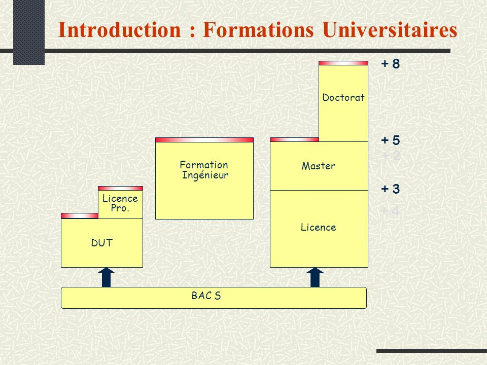 Introduction : Formations Universitaires
