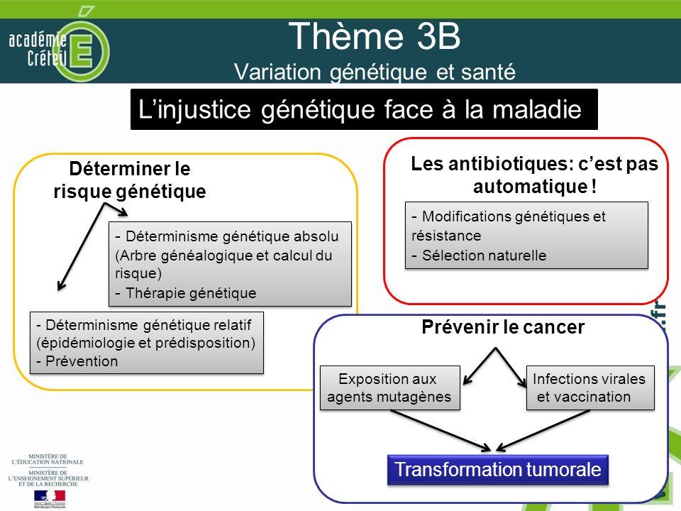 Thème 3B Variation génétique et santé
