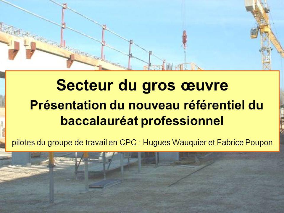 Secteur du gros œuvre Présentation du nouveau référentiel du baccalauréat professionnel pilotes du groupe de travail en CPC : Hugues Wauquier et Fabrice Poupon