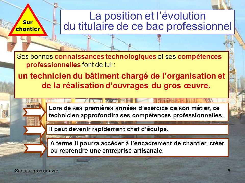 La position et l'évolution du titulaire de ce bac professionnel