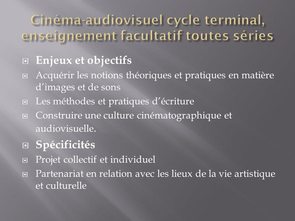 Cinéma-audiovisuel cycle terminal, enseignement facultatif toutes séries