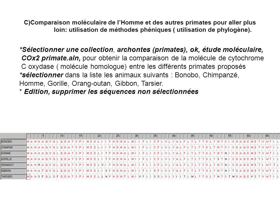 C oxydase ( molécule homologue) entre les différents primates proposés