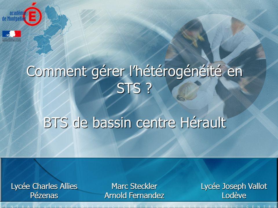 Comment gérer l'hétérogénéité en STS BTS de bassin centre Hérault