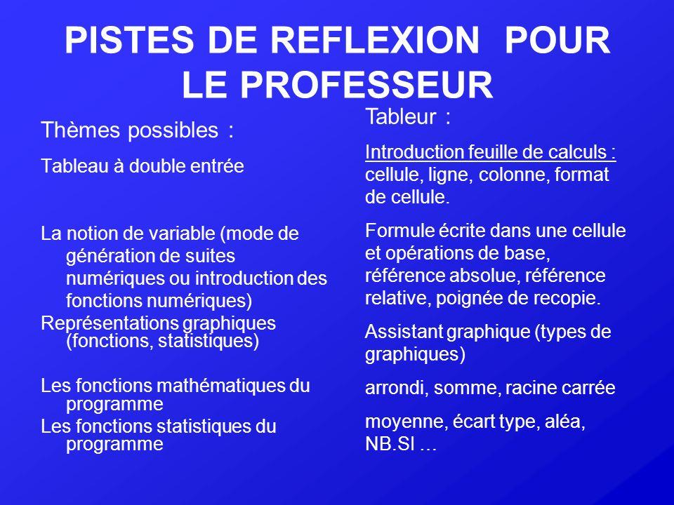 PISTES DE REFLEXION POUR LE PROFESSEUR