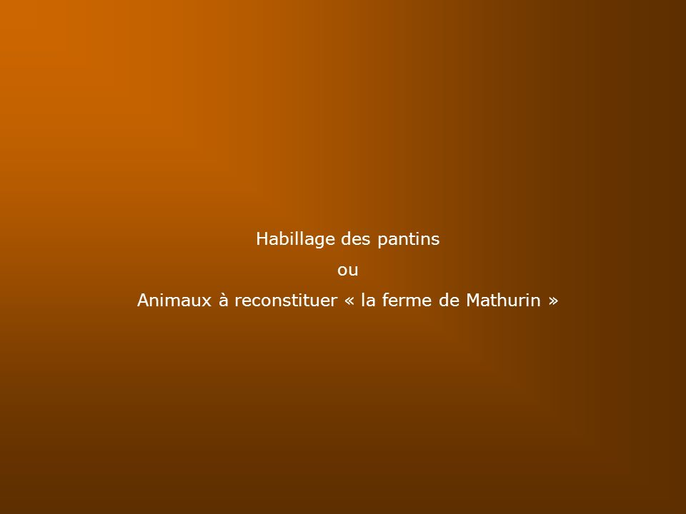 Animaux à reconstituer « la ferme de Mathurin »