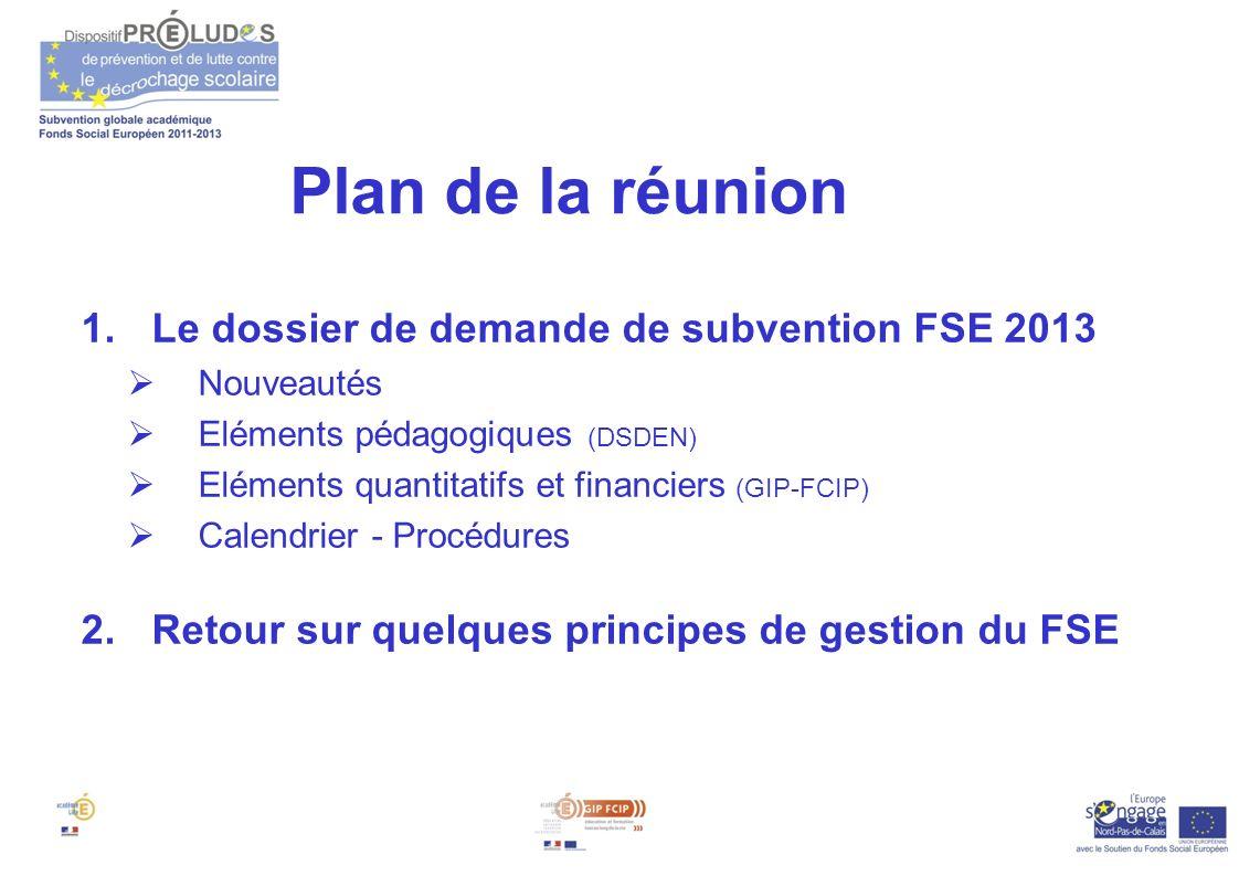Plan de la réunion Le dossier de demande de subvention FSE 2013