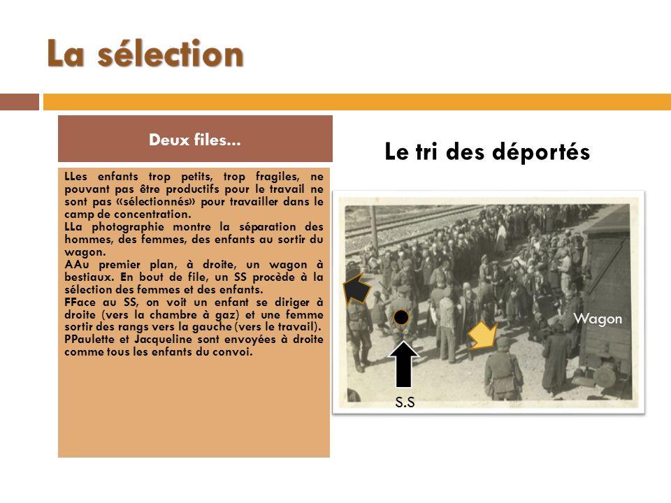La sélection Le tri des déportés Deux files... Wagon S.S