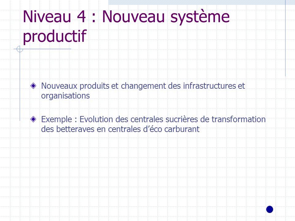 Niveau 4 : Nouveau système productif