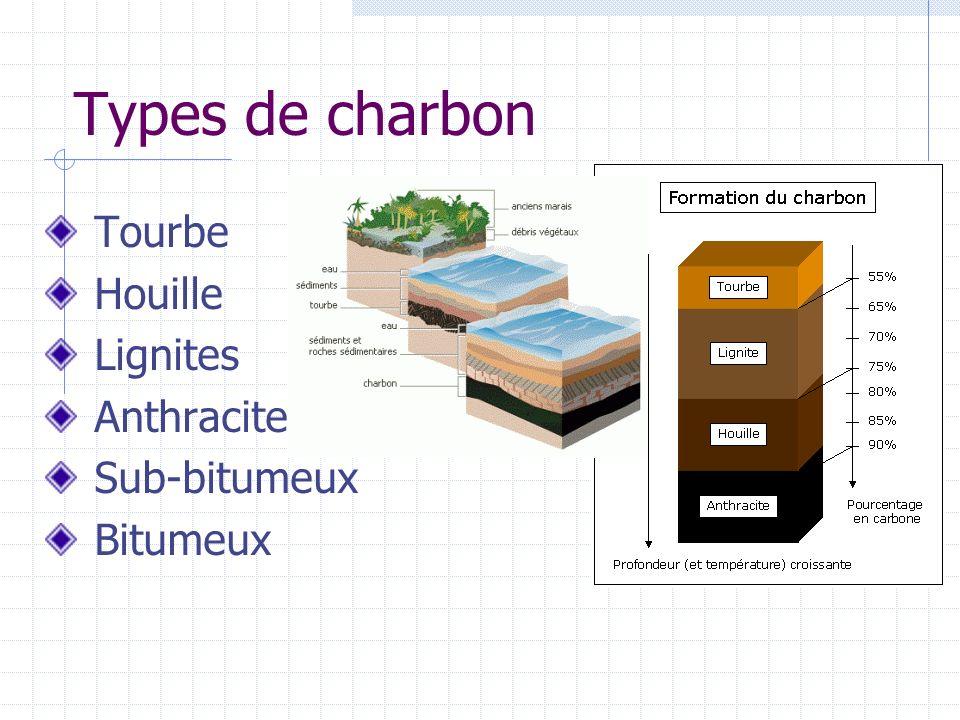 Types de charbon Tourbe Houille Lignites Anthracite Sub-bitumeux