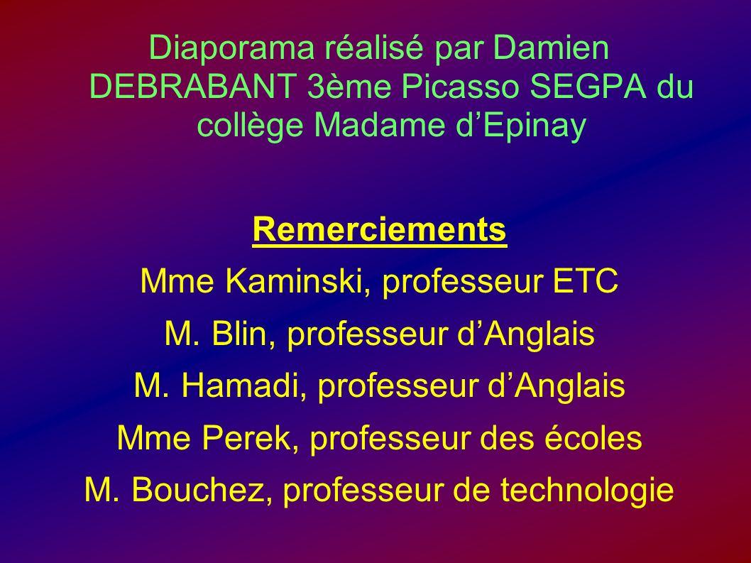 Mme Kaminski, professeur ETC M. Blin, professeur d'Anglais