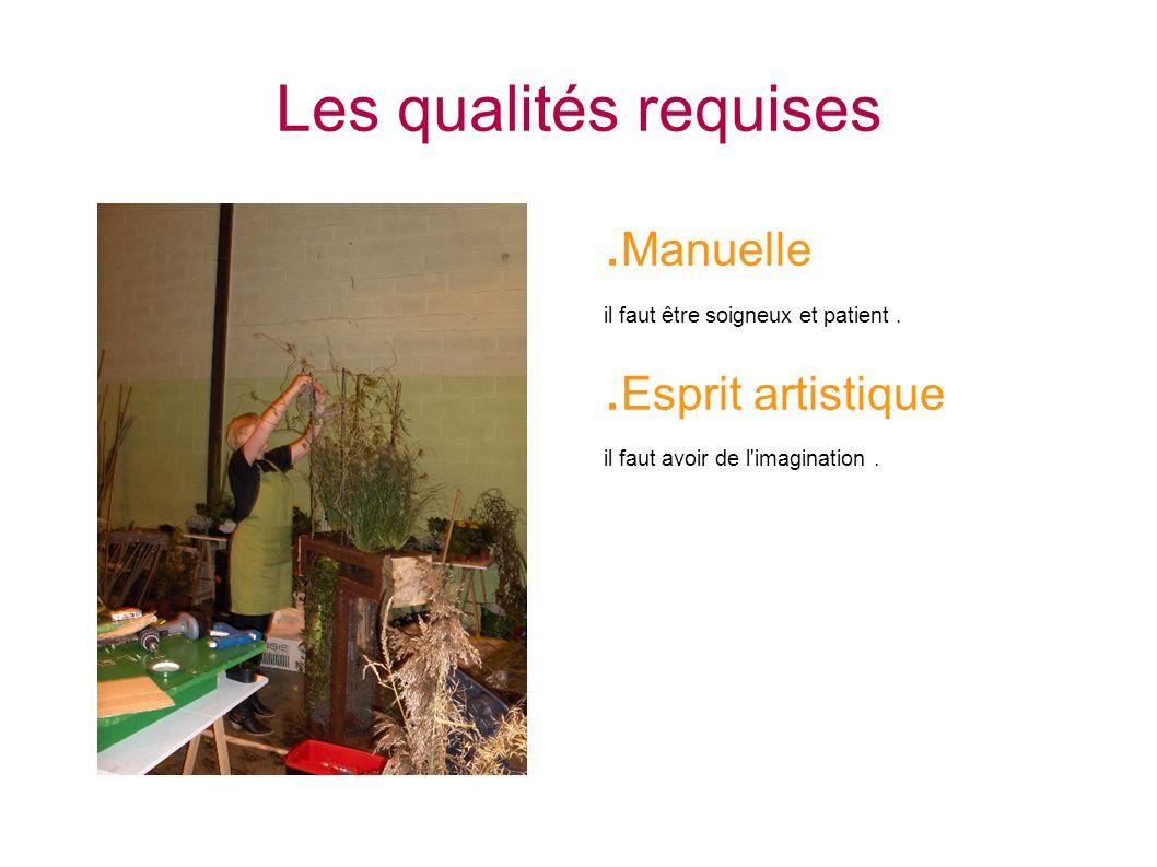 Les qualités requises .Manuelle .Esprit artistique