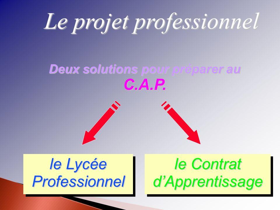 Deux solutions pour préparer au C.A.P.