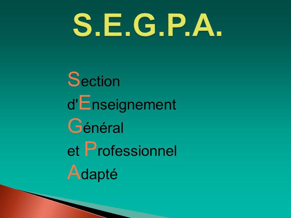 S.E.G.P.A. Section d Enseignement Général et Professionnel Adapté